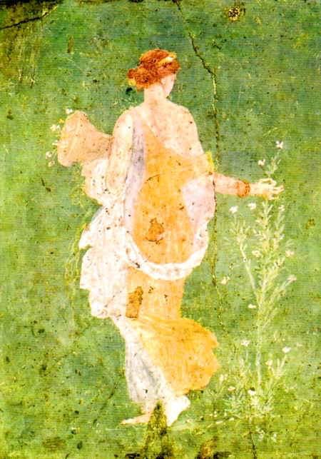 Flora da Stabia, Villa di Arianna (inv. 8834)