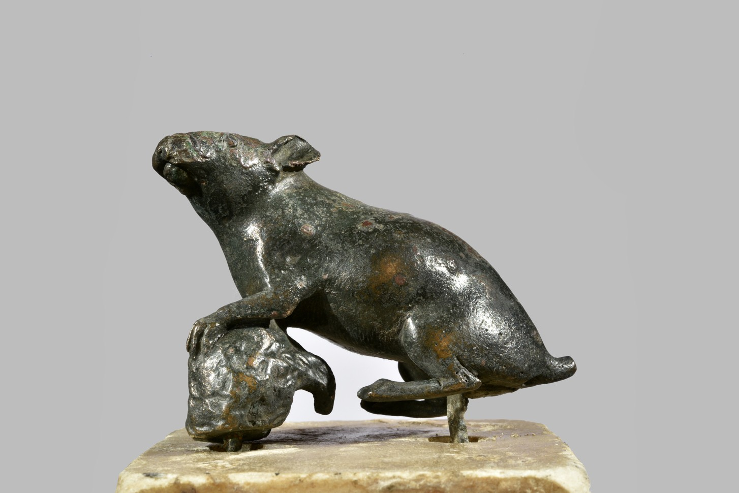 Alcune statuine bronzee raffiguranti topi in esposizione al Museo dal prossimo 24 gennaio 2020